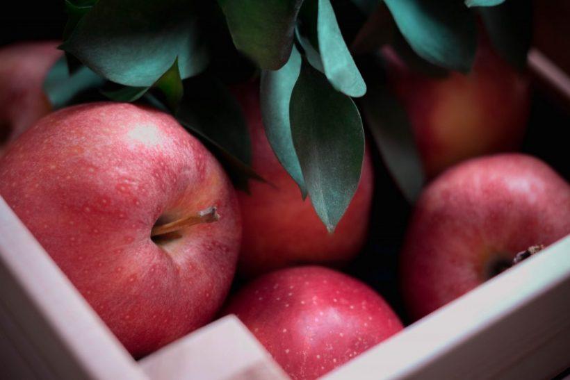 pommes-clafoutis
