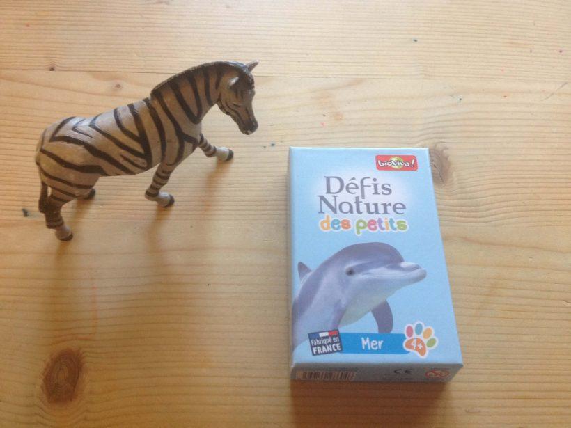 défi_nature