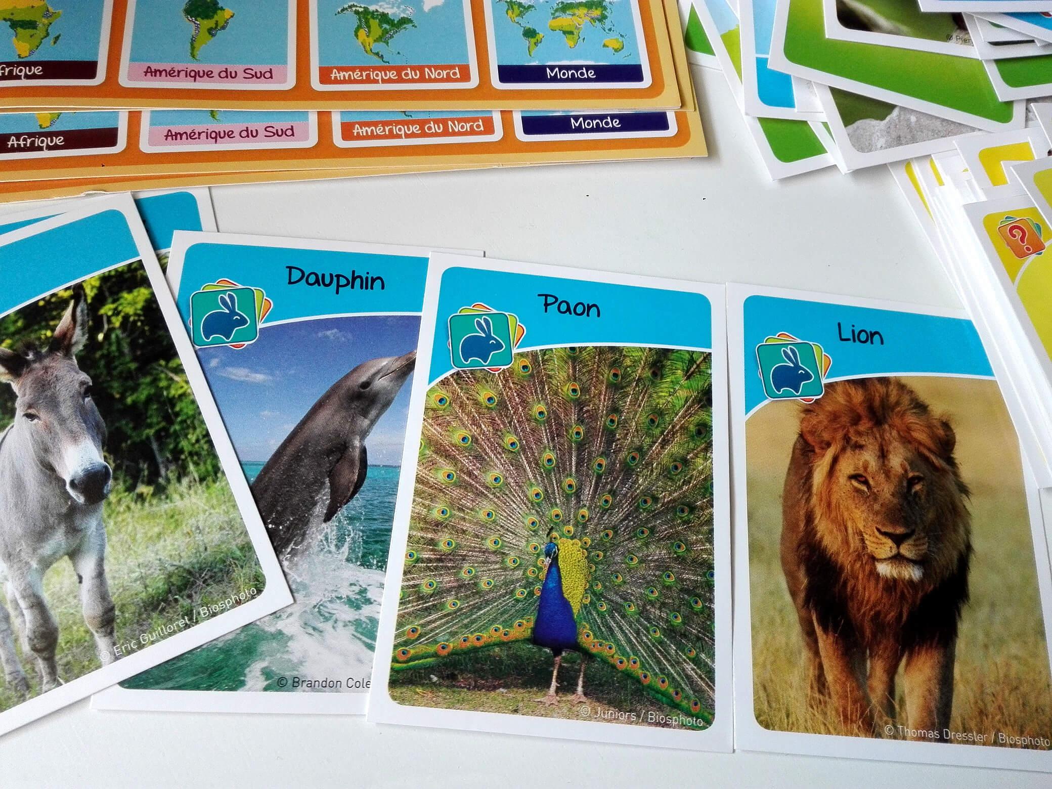 jeu-de-cartes-animaux