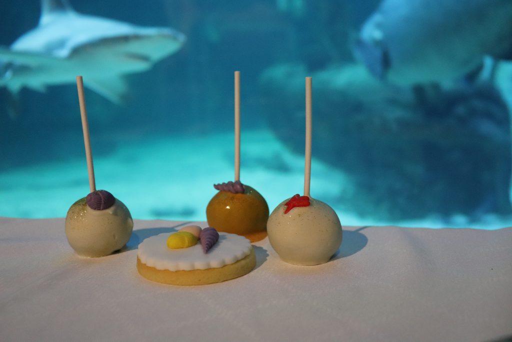 buffet-seaquarium