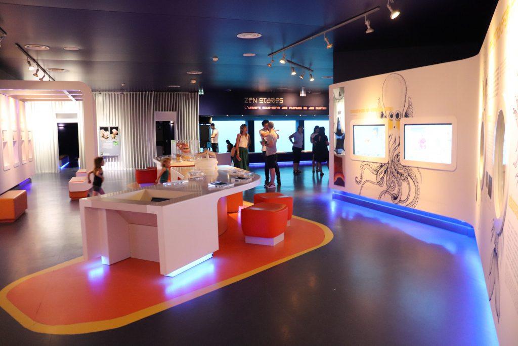 espace-interactif-seaquarium-grau-du-roi