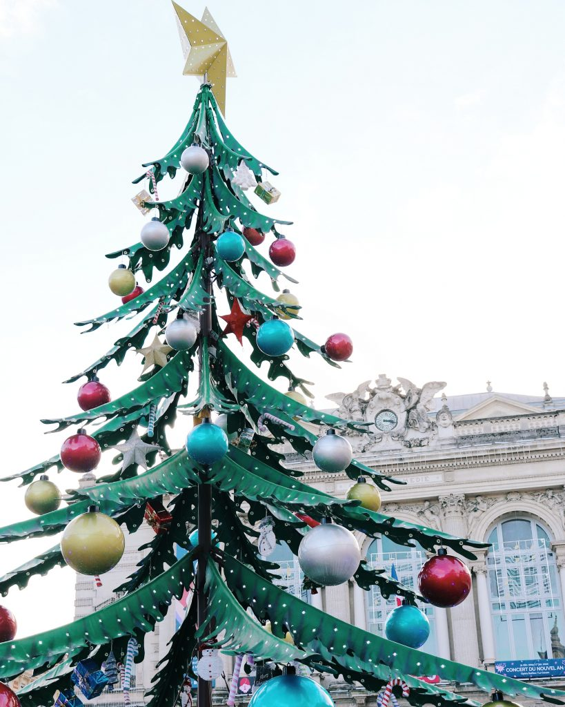 sapin-montpellier