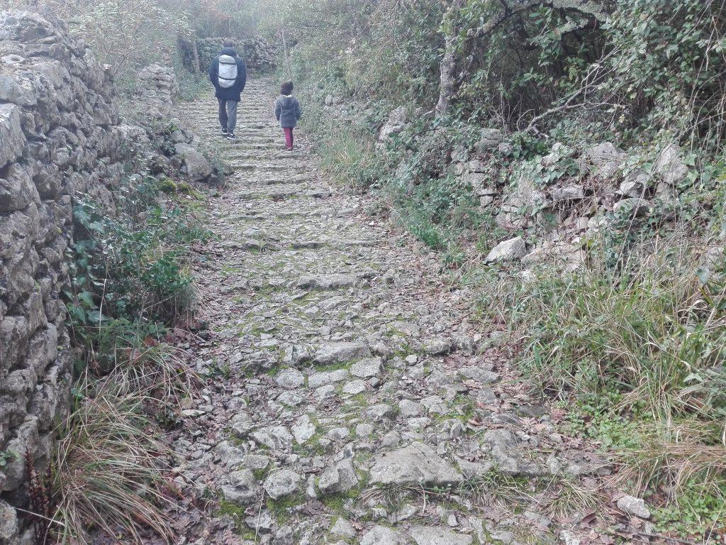 les-escaliers-sauve