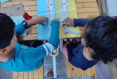 activites-enfants-squelette