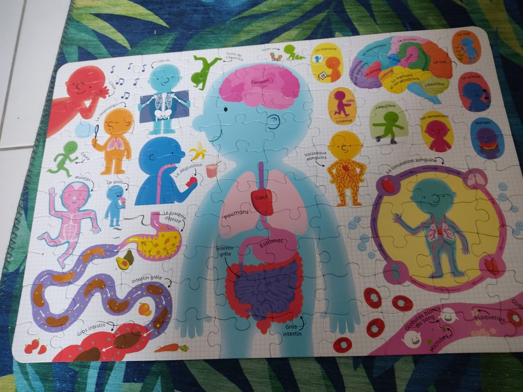puzzle-corps-humain-usborne