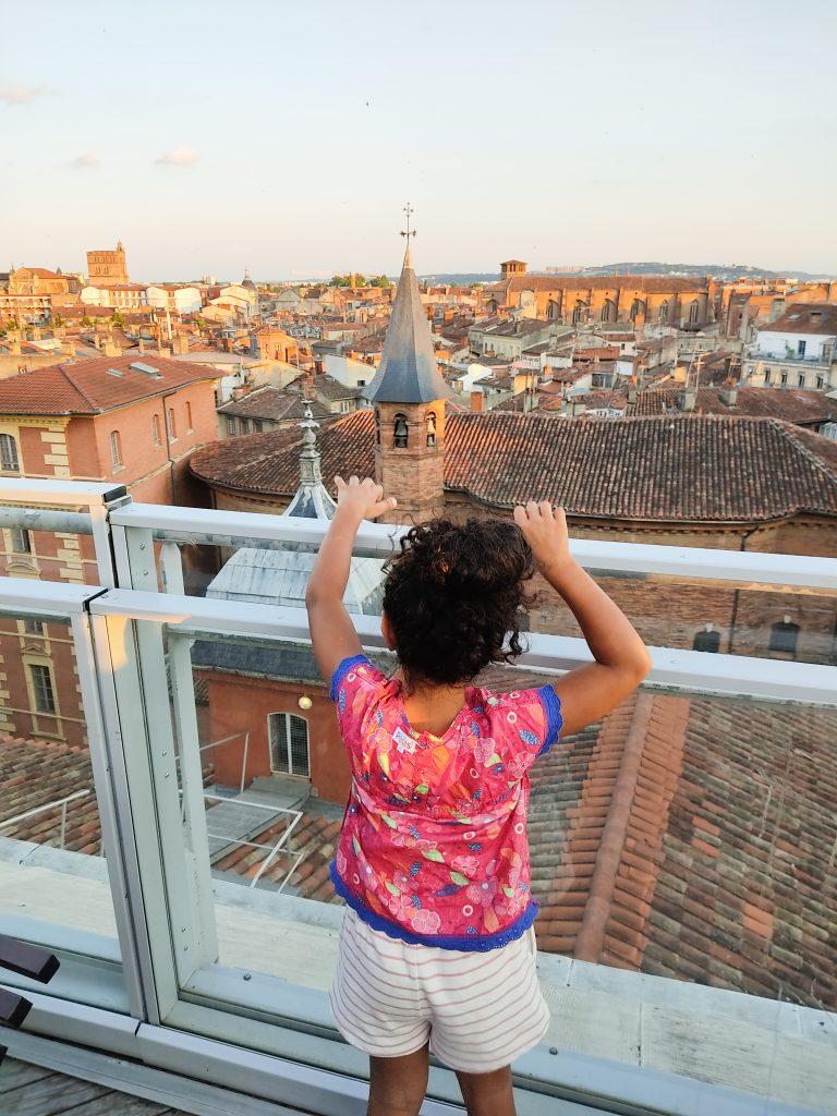 panorama-toulouse-ma-biche-sur-le-toit